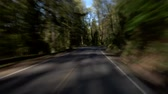 blur : v8. Driving down a windy road on hillside in Portland hills.