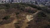 minato : Japan Tokyo Aerial v96 Flying low over Yoyogi park panning up to cityscape views Stock Footage