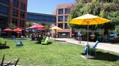 google campus : Mountain View, CA, USA - August 15, 2016: dining and relaxing area with colorful parasols and deck chairs for sunbathing for Google employees at Googles headquarters or Googleplex. Stock Footage