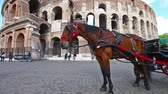 típico : Rome, Italy - May 12, 2016: Typical horse-drawn carriage with tourists in front of Colosseo, Colosseum, Flavian Amphitheatre, the largest amphitheater in the world and one of the symbols of Rome. Vídeos