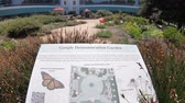 google campus : Mountain View, California, United States - August 13, 2018: Google ecologic demonstration garden at Campus of Google HQ, Silicon Valley. Google is a technology company leader in internet services