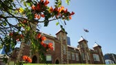 фронт : Bougainvillea in foreground with sunbeams in Government House Gardens, Perth city. Government House east front, the residence of Governor of Western Australia on background. Blue sky. Copy space.