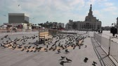 studnia : Doha, Qatar - February 20, 2019: Many pigeons flying in Souq Waqif square. Middle East, Arabian Peninsula, Persian Gulf. Fanar Islamic Cultural Center with Spiral Mosque and Minaret on background.