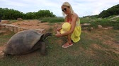SLOW MOTION: lifestyle tourist woman in yellow, interacts with Aldabra Giant Tortoise, Aldabrachelys gigantea, in nature with sea background. Popular tourist attraction in La Digue, Seychelles