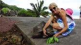 SLOW MOTION: Happy caucasian tourist woman near Anse Severe La Digue with Aldabra Giant Tortoise, Aldabrachelys gigantea. Popular tourist attraction in Seychelles, Indian Ocean. Natural sea background Dostupné videozáznamy