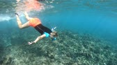 apnee : SLOW MOTION: woman swims underwater of Felicite Island, Seychelles. Girl with fishes in the Indian Ocean. Tropical destination holiday and travel lifestyle with watersport activity.