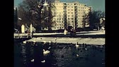aves marinhas : BERLIN, GERMANY - CIRCA 1979: Greenwich Promenade with historical restaurant Tegeler Seeterrassen. People and seabirds on the Tegeler See Lake in winter. Stock Footage