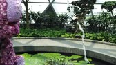 orchideen : Singapore - Aug 8, 2019:Elephant Flower Sculpture, Topiary Walk at Canopy Park. Jewel Changi Airport is nature-themed with gardens, attractions, hotels, retail and restaurants since 2019.SLOW MOTION