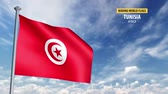 hullámos : 3D flag animation of Tunisia Stock mozgókép