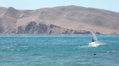 krk : Windsurfers in Baska sea, Krk island in Croatia