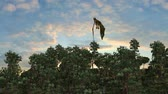 wyvern : dragon flies over forest on sky background Stock Footage