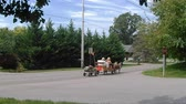 Пенсильвания : Amish Transportation Type Kids Wagon with Miniature Pony Pulling it Стоковые видеозаписи