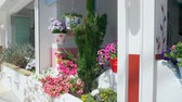 tencere : Traditional mediterranean style flower decoration on the street Stok Video