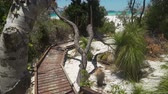 orientar : Wooden boardwalk in whitehaven beach in Australia