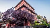 budynki : Red Chinese pagoda in Paris in the eight district, zoom in Wideo