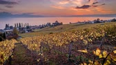 leman : Stunning sunset over vineyards and Geneva Lake in Lutry, Switzerland, timelapse in fall season Stock Footage