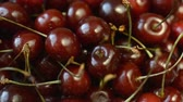 cherries background footage close up