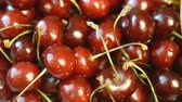 cseresznye : Fresh, ripe, juicy cherries rotate. Stock mozgókép