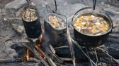 rook : Cooking mushroom soup on campfire hd stock footage Stockvideo
