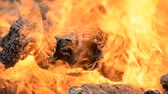 рамка : Big Bonfire of the Logs Burns hd stock footage