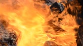 개념 : Naturural big fire flame close-up background hd stock footage