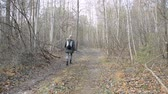 Hiker hiking in autumn forest, back view walking on road