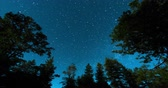 bússola : Stars above the treetops. Shot at Letts Lake, Mendocino County, California