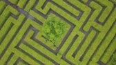 doolhof : Aerial view of maze, green labyrinth in park, drone point of view from above.