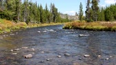View of the Gardner River near Sheepeater Cliffs, Yellowstone National Park. Camera Locked.