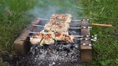basting : Chicken meat pieces being fried on a charcoal grill close up