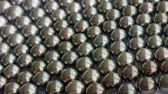 perle : Black south sea pearls