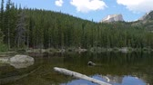 сосна : Wide slow motion panning shot of beautiful Bear Lake surrounded by huge pine trees in Rocky Mountain National Park, Colorado. Стоковые видеозаписи