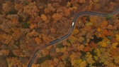 fundo colorido : Aerial view at the road in beautiful autumn forest
