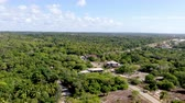 Бразилия : Aerial view of tropical forest, jungle in Praia Do Forte, Brazil. Detailed of a forest supporting lush ferns and palms trees. mountain ranges and hills covered by evergreen forest. Стоковые видеозаписи