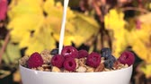 musli : poured milk on red fruit and muesli Wideo