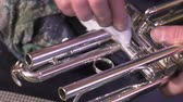 repairer of brass and wood wind instruments