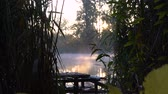 oranžový : Sunrise on the riverbank. Landscape with wooden fisher bridge, reeds and smoke on the water