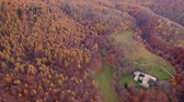 de faia : Flying with drone over woodlans in a beautiful sunny day of autumn