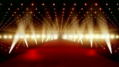 bright night lights : Red Carpet festival scene animation