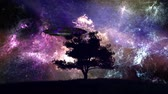 spacecraft : 4K UFO behind Lonely Tree under Amazing Night Sky 3D Animation Cinema 4K 4096x2304 ultra high definition