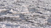 frieza : Drifting ice on Elbe River, Flusslandschaft Elbe Biosphere Reserve, Germany Stock Footage