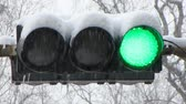 proibir : Snowfall. Traffic light.