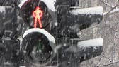 proibir : Snowfall. Traffic Light for pedestrian.