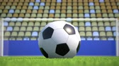 grande angular : Camera zooms out from an extreme close-up to a soccer ball lying in the grass with goal and empty grandstands in the background. Tele lens. No slogans. Realistic high quality 3d animation.