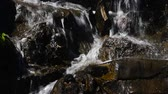rift : Waterfall fast stream, rapid water with drops over the rocks and stones in watercourse of river or brook