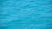 Close up background of vivid teal blue sea ripples running on water surface, high angle view