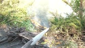 sivri : Survival clip of knife carving stick into sharp point on river bank with a pile of sticks for fire in frame.