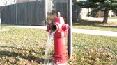 poça de água : Red fire hydrant drains water and splashing onto ground after cap is taken off, in bright sunlight.  Vídeos