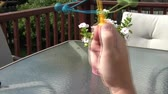 colidir : Clip of hand making plastic balls collide toy, outside in natural lighting.
