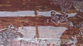 barna : Abstract of water dripping onto puddle on rustic deck after brief rain shower in summer.